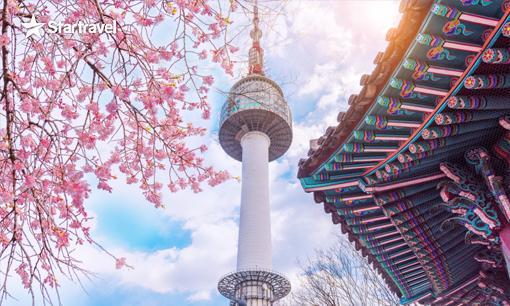 Khám phá Hàn Quốc - Rạng rỡ sắc xuân