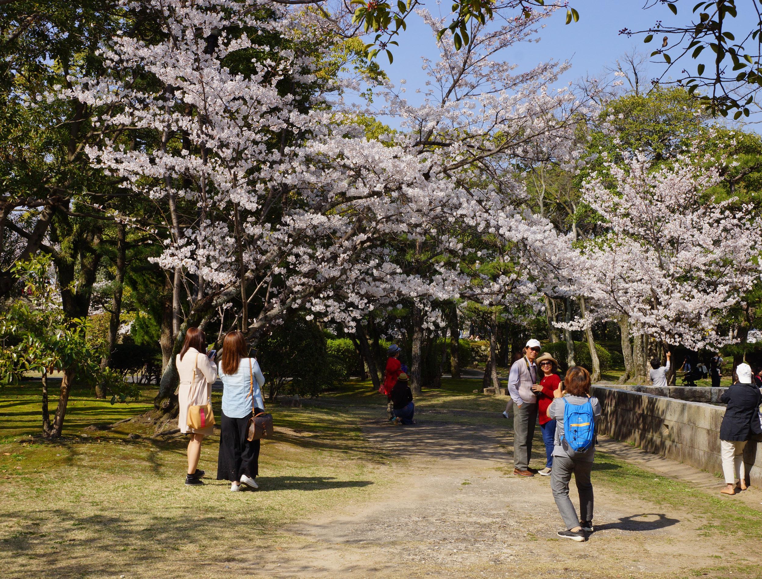 Trải nghiệm Nhật Bản 3