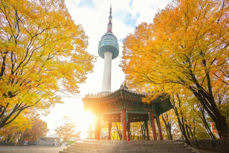 SEOUL (Ăn sáng, trưa, tối)