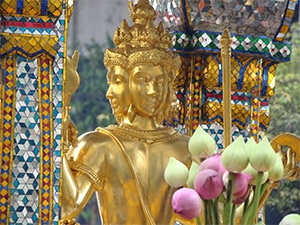 Ngày 05: BANGKOK - CHÙA VÀNG - CUNG ĐIỆN MÙA HÈ