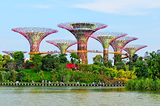 Singapore - Việt Nam