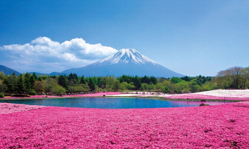 Tokyo Fuji Moutain