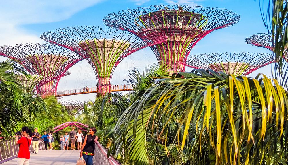 du thuyền 5 sao tham quan garden by the bay singapore
