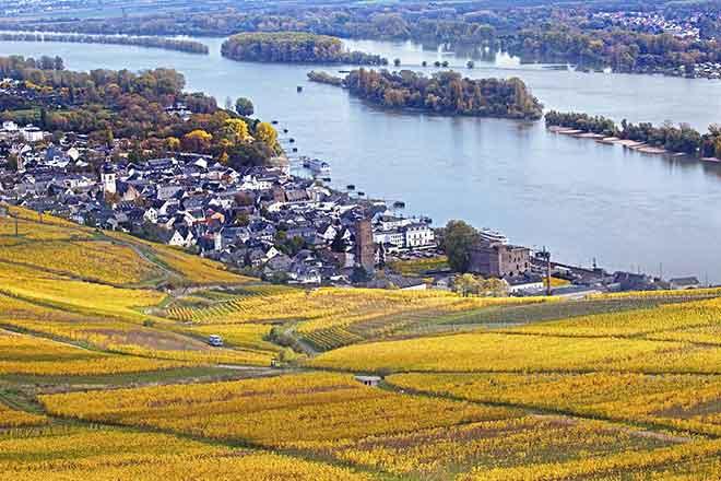 Thị trấn Rudesheim